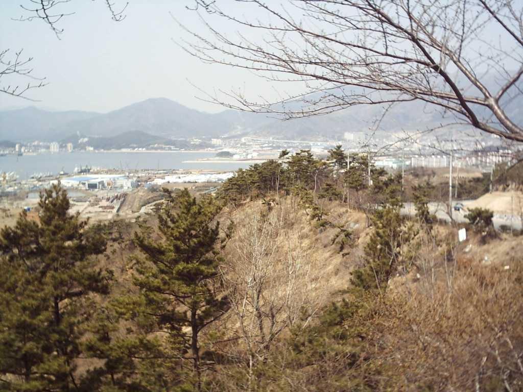 jinhae