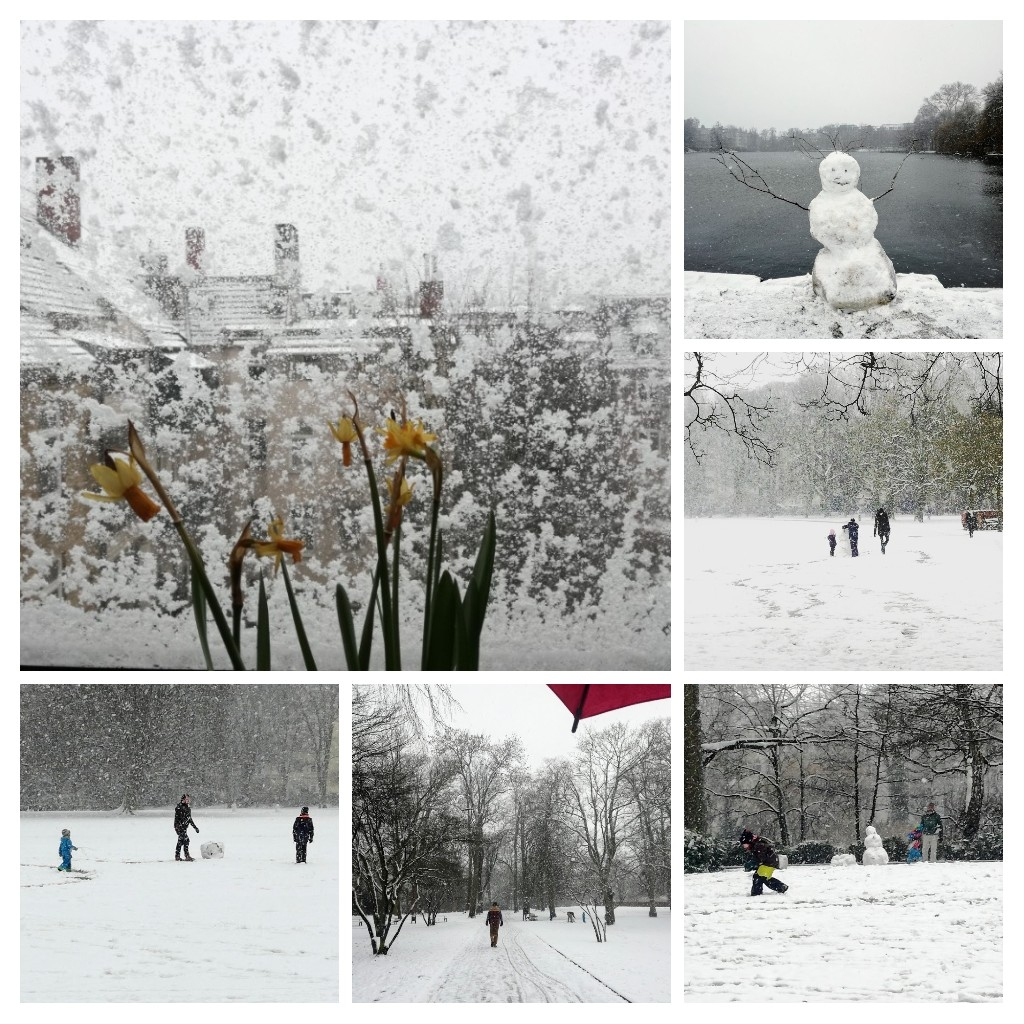 CollageWinter
